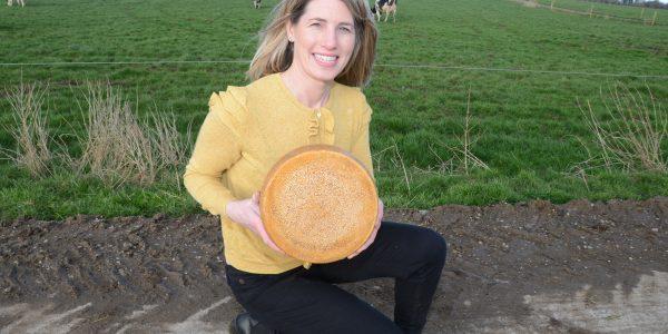 Teresa Roche & Cows